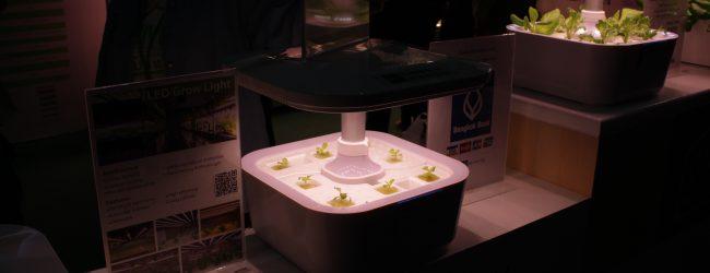นวัตกรรมใหม่ฝีมือคนไทย เอาใจสายสีเขียวปลูกพืชในบ้าน